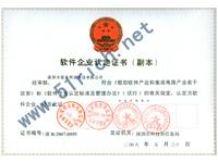 锐奇软件企业认定证书